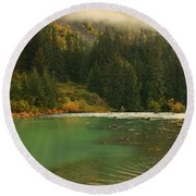 Grizzly Bear Fishing In Chilkoot River Round Beach Towel