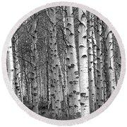 Grove Of Birch Trees Round Beach Towel