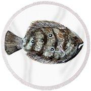 Gulf Flounder Round Beach Towel