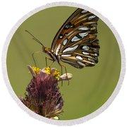 Gulf Fritillary Butterfly - Agraulis Vanillae Round Beach Towel