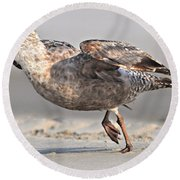 Gull Taking Off Round Beach Towel