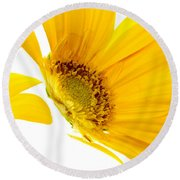 Half Yellow Gerbera Round Beach Towel