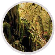 Hall Of Mosses Round Beach Towel