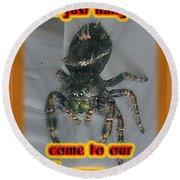 Halloween Party Invitation - Salticid Jumping Spider Round Beach Towel