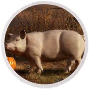Halloween Pig Round Beach Towel