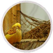 Halloween Yellow Bird Round Beach Towel