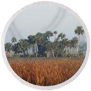 Hammock, Everglades National Park Round Beach Towel