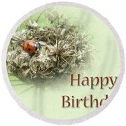 Happy Birthday Greeting Card - Ladybug On Dried Queen Anne's Lace Round Beach Towel