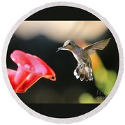 Happy Hummingbird Round Beach Towel
