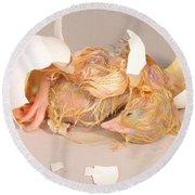 Hatching Chicken 19 Of 22 Round Beach Towel