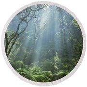 Hawaiian Rainforest Round Beach Towel by Gregory Dimijian MD