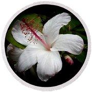 Hawaiian White Hibiscus Round Beach Towel