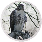 Hawk 9 Round Beach Towel
