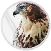 Hawk Majesty Round Beach Towel