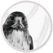Hawk On White Background Round Beach Towel
