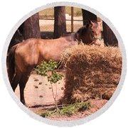Hay's For Horses Round Beach Towel
