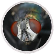 Head Of A Green Blow Fly Round Beach Towel