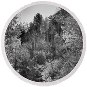 Heart Of The Aspen Forest Round Beach Towel