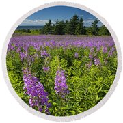 Hedge Woundwort Flower Blossoms And Field Round Beach Towel
