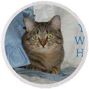 Heidi Cat Miss You Round Beach Towel