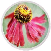 Helenium Flower 2 Round Beach Towel