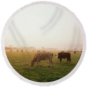 Hereford Cattle, Ireland Round Beach Towel