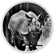 Heres Lookin At You  Kid Indian Rhino  Round Beach Towel