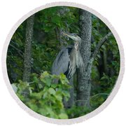 Heron On A Limb Round Beach Towel