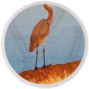 Heron On Palm Round Beach Towel