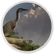 Hesperornis By The Sea Round Beach Towel
