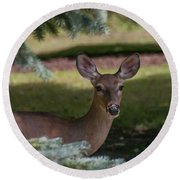 Hi Deer Round Beach Towel