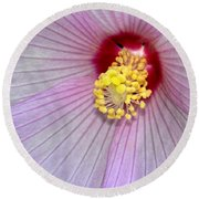 Hibiscus Closeup Round Beach Towel