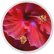Hibiscus Duo Round Beach Towel