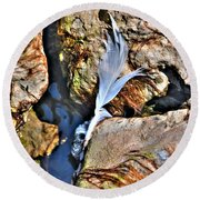Hidden Images Landscaped  Round Beach Towel