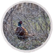 Hiding Pheasant Round Beach Towel