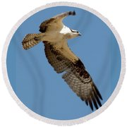 High Flyer Round Beach Towel