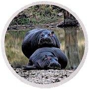 Hippos In Love Round Beach Towel