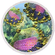 Hiv Three Sectioned Virions On Blue Round Beach Towel