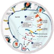 Hiv Virus Replication Cycle Round Beach Towel
