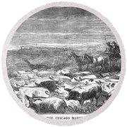 Hog Driving, 1868 Round Beach Towel
