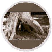 Hollow Tree Round Beach Towel