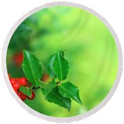 Holly Branch Round Beach Towel