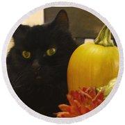 Black Cat And Pumpkin Round Beach Towel