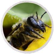 Honey Bee 2 Round Beach Towel