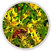 Honey Bee And Sedum  Round Beach Towel