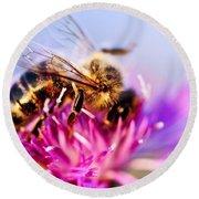 Honey Bee  Round Beach Towel by Elena Elisseeva