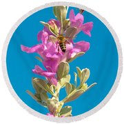 Honey Bees On Sage 1 Round Beach Towel