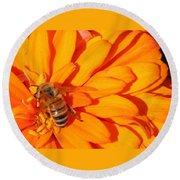 Honeybee On An Orange Zinnia Round Beach Towel