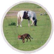 Horse And Fox Round Beach Towel