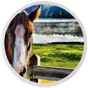 Horse At Lake Leroy Round Beach Towel